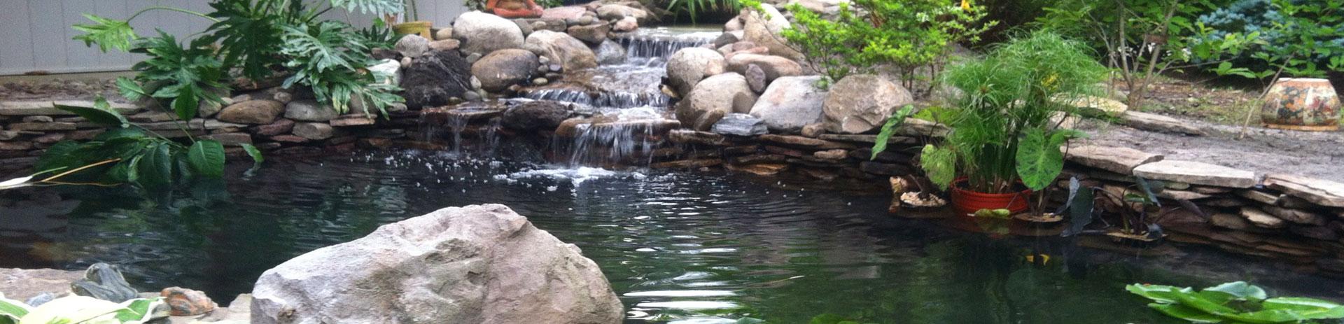 Ponds U0026 Water Features