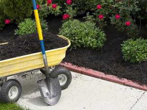 yard-maintenance